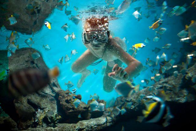 Aventuras en los Cenotes Mayas
